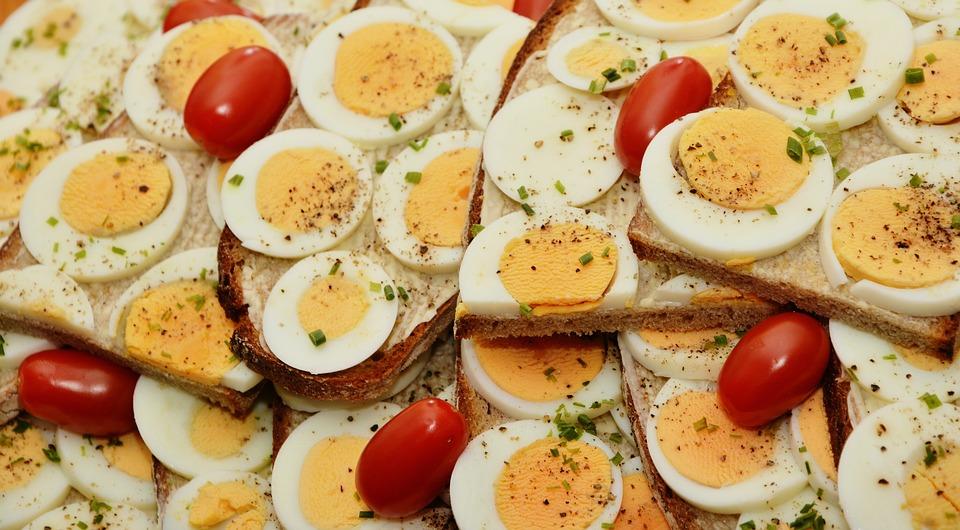 דיאטת חלבונים מעולה