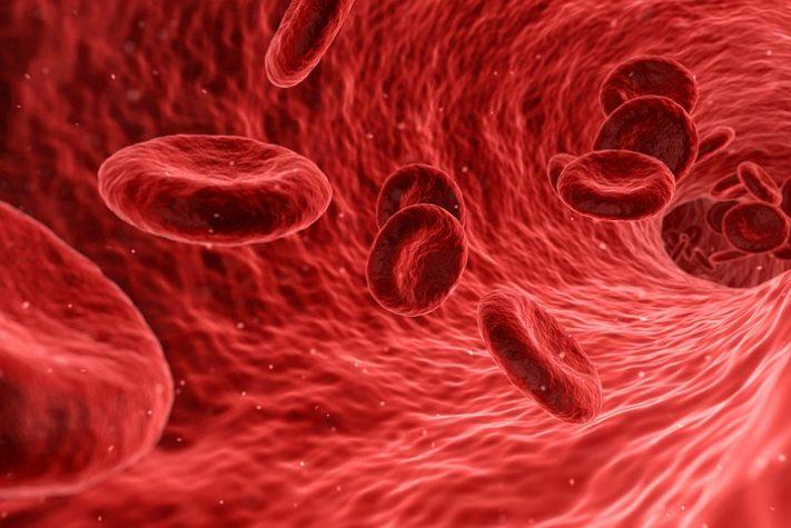 תפריט לפי סוג דם